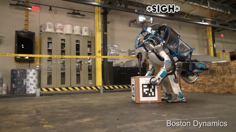 mind boston dynamics