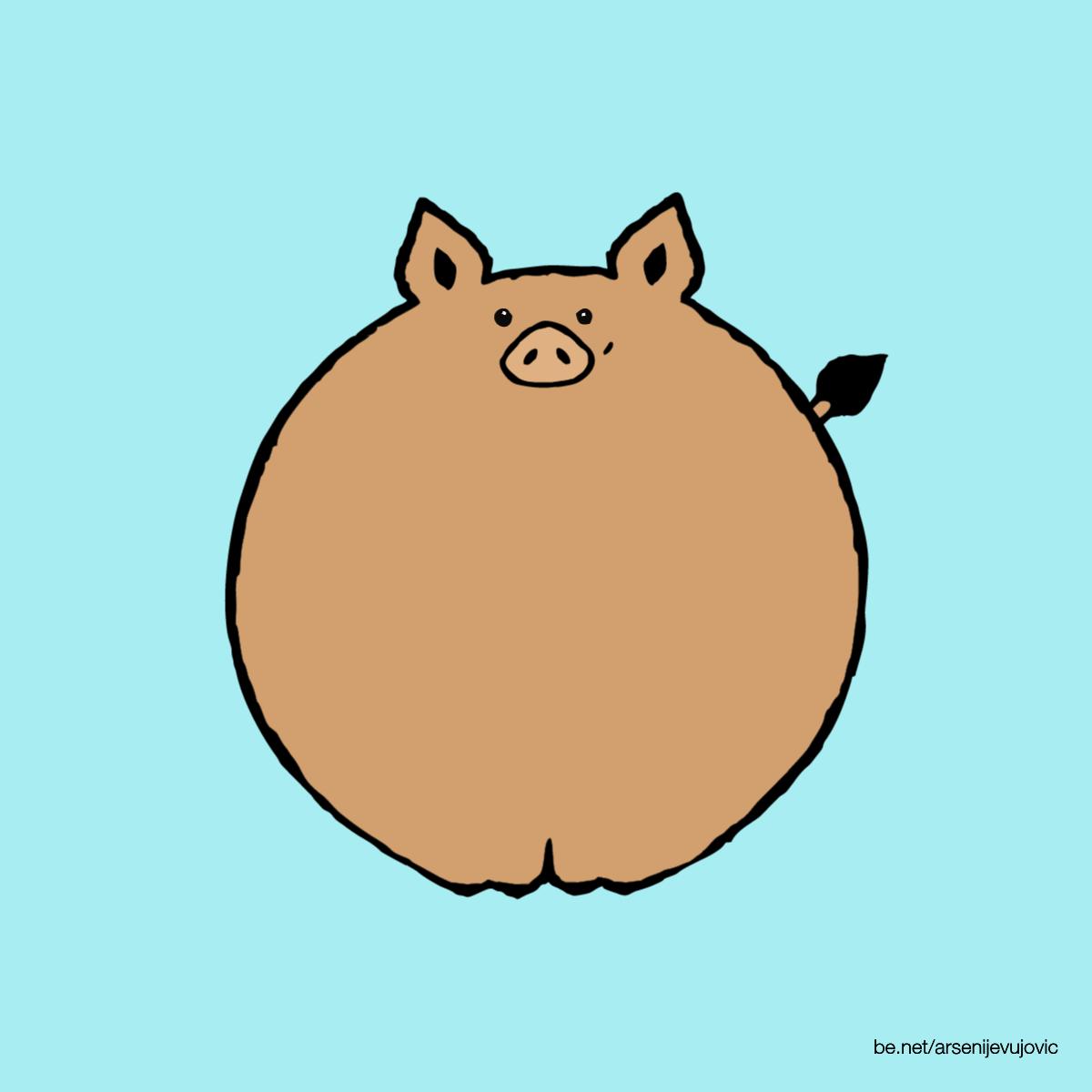 animation pig wild