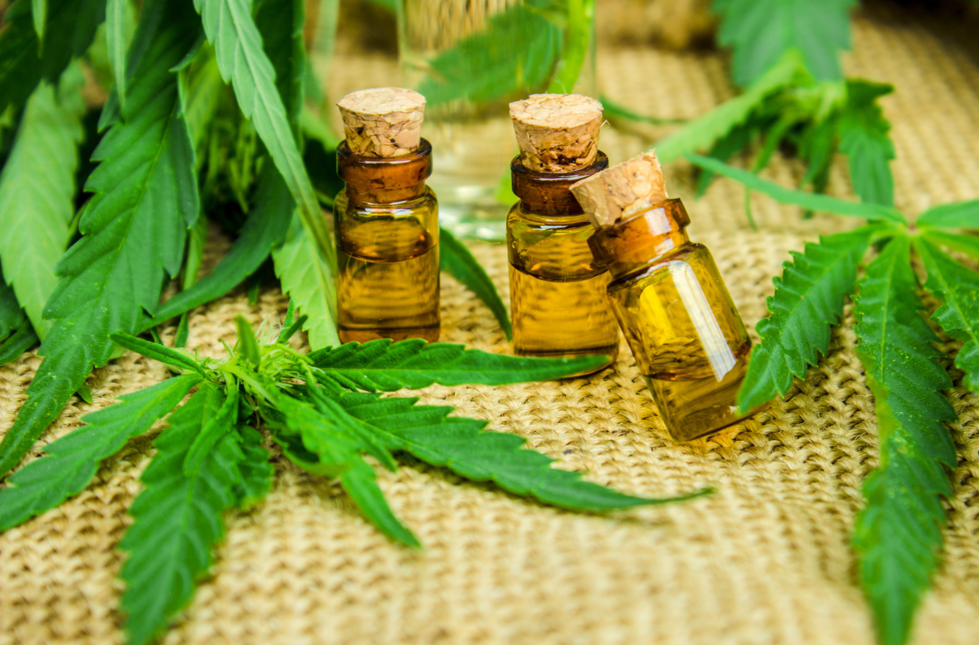 Purchasing CBD Products Safely Online